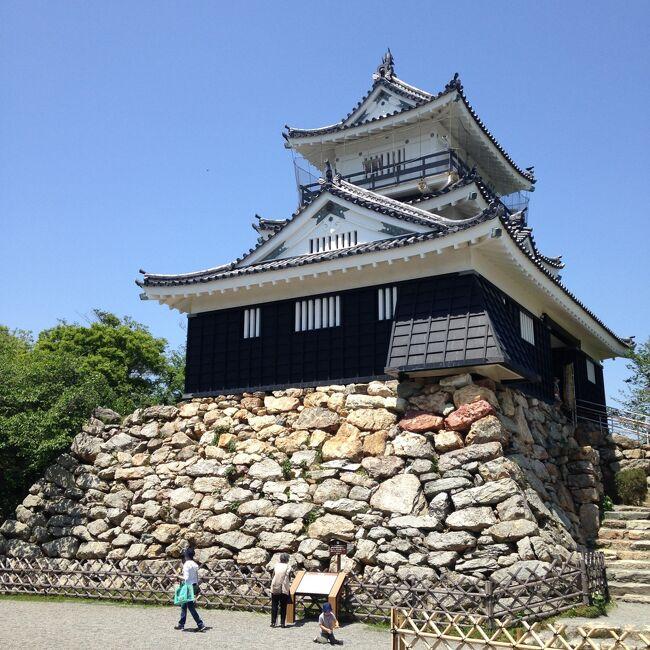 お城が好きで、これまでたくさん行きました。<br />どれくらい行っているのか改めて確認したいと思い、旅行記にまとめてみました。<br /><br />ちなみに、私がお城をめぐるのは<br />お城の雰囲気が好きなのと、高いところに登りたいから(笑)<br /><br />残念ながらお城の歴史はあまり興味が無くて、<br />こんなにお城に行っているのに勉強をしないのは勿体ないと自分でも思います。<br /><br />※静岡県民なので、東海地方のお城が多めです。<br />※2020/8/13時点で47のお城に行ったようです
