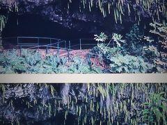 カウアイ島-1 1995/7 庭園の島 ワイルア川~シダの洞窟 ☆Hyatt-Regency・KAUAI のんびり3連泊