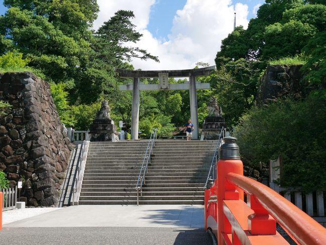 富士山を巡る旅の二日目。<br />前日の雨から一転、快晴となり最高のドライブ日和となりました。<br />武田信玄公ゆかりの武田神社に参拝し、素敵な御朱印をいただきました。<br />勝沼エリアでワイナリーの売店を巡り、ショッピングを楽しみました。<br />買い物に夢中で、写真は少な目です(^-^;