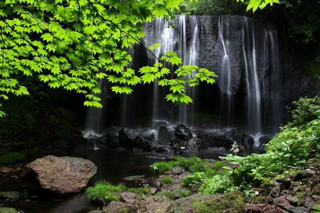 ☆2年ぶりに猪苗代町の中ノ沢温泉にほど近い『達沢不動滝』に行ってきました。<br />達沢不動滝は『日本の滝百選』には選ばれていない福島県猪苗代町にあるローカルな滝ですが、<br />全国の滝マニアからはその秀麗な美しさかからとても人気のある滝で、<br />度々TVや映画の撮影地にもなっている隠れ名瀑です。<br />梅雨入りしたものの、撮影時は雨不足で水量はやや物足りなかったですが、<br />早朝の訪問で一番の乗りだったので誰に気兼ねすることなく、<br />邪魔もされず、のんびりマイナスイオンに癒されながら撮影できました(^^♪。<br />旅行記的には滝一つでは寂しいかなと思い帰り道に<br />旧長沼町勢至堂の『銚子ヶ滝』にも立ち寄ってみました。<br /><br /><br />豪雨災害が相次いでいます。<br />皆さまの地区は大丈夫でしょうか?