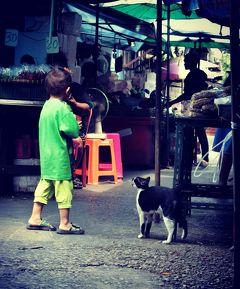 2019年 5月 タイ・バンコク プラカノンで猫探し