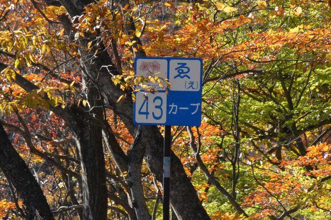 紅葉を見に中禅寺湖・半月山へ。<br />しかし連休最終日、帰り道 路線バスが大混雑。4~5本後の便でないと乗れない見通しだったので思い切って歩きました。<br />普段クルマやバスだと立ち止まってゆっくり見ることの出来ない、いろは坂の景色をじっくり堪能できました。<br />いや~~、貴重な体験ができて大満足な一日となりましたねー(⌒∇⌒)<br /><br />いろは坂、いいところです。ハイキングコースにサイコーですっ!!