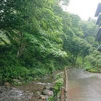近くにも良い所があったんだ~!名栗温泉 大松閣 の旅