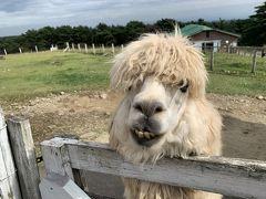 犬連れ那須高原の旅 1泊2日