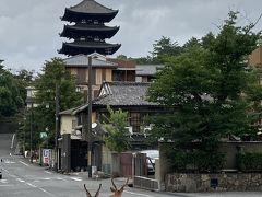 お仕事帰りにサクッと奈良♪ 奈良ホテルに泊まってみたら・・・