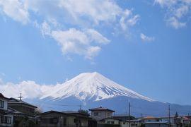 [秘境!路線バス乗り継ぎ旅 初日:前編]   神奈川・静岡・山梨の3県から眺める「富士山」と富士吉田名物「吉田のうどん」