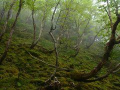梅雨の八ヶ岳・硫黄岳