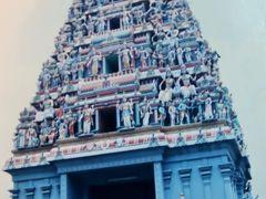 シンガポール-4 1997年 マンダイ蘭園・ナイトサファリ・港内クルーズ ☆多民族City-寺院も色いろ