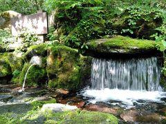 やっと旭岳に・と言ってもnimameとお姉ちゃんは登山では無く・姿見の池周辺散策です。2