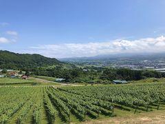 赤井川・仁木の旅行記