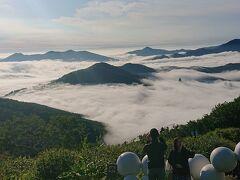 雲海テラスに初挑戦!瀬戸内海のような絶景とラベンダー満開の富良野と美瑛を巡る。