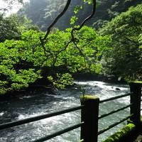 箱根 塔ノ沢温泉 『環翠楼』 に泊まってきました。