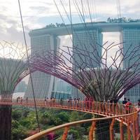 家族旅行は生まれ変わったシンガポールで★シンガポール3泊5日の旅