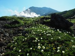 神々の遊ぶ庭へ 旭岳登山旅行 その2旭岳、間宮岳、裾合平周回コース前編