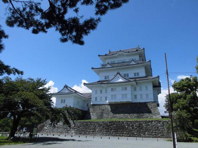 小田原城とその風景