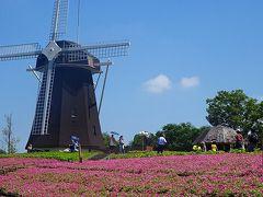 風車の丘大花壇
