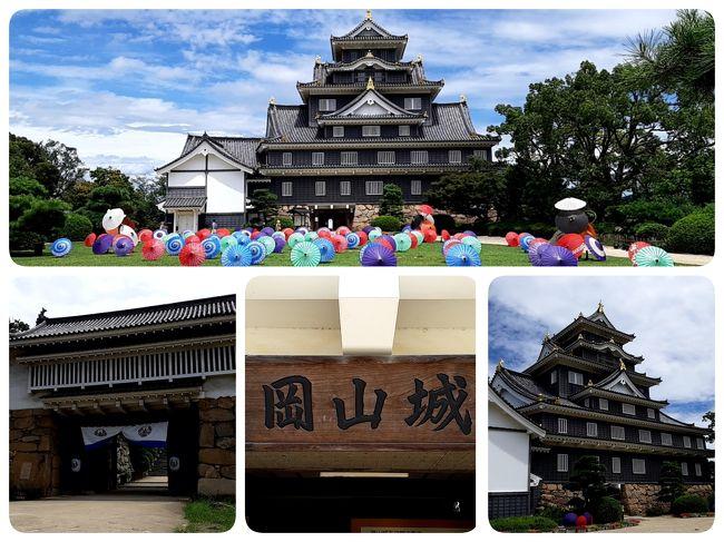 「Go To Travel」という政府お得意の「税金ばら撒きキャンペーン」を活用した国内回帰旅の第二弾です。<br /><br />今回の行程スケジュールは以下のとおり。<br /><br />■第1日目は、大学のゼミ旅行以来の【高知県 高知市】にて1泊。<br />■第2日目は、飽きるほど行った【愛媛県 松山市】にて1泊。<br />■第3日目は、しまなみ海道を経由して【岡山県 倉敷市】にて1泊。<br />■第4日目は、観光しつつ帰宅。<br /><br />合計3泊4日のマイカーによる「4トラ日本地図 色塗り 兼 湯治旅」です。<br /><br /> 高知・愛媛・岡山 各県の観光事業に貢献しつつ、足の膝を癒す湯治旅です。おまけで四国全県色塗り完了!!