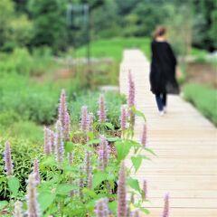 パサール三芳とクヌギの森を姉妹で歩く☆埼玉県三芳町:三富今昔村