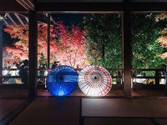 紅葉散策2019~ここまできたら勝林寺のライトアップまで見に行ってみた~