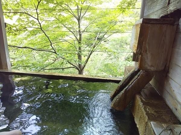 久しぶりにドライブで宮城県山奥の峩々温泉に行きました。2012年以来です。<br />湯ぢからを感じる大自然の秘湯。ゆったりと湯あみを楽しんできました。<br />ブログで詳細を以下にアップしています。<br /><br />Pockieのホテル宿フェチお気楽日記III<br />https://pockie3213.exblog.jp/