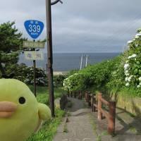 青森県津軽地方を たびするトリ