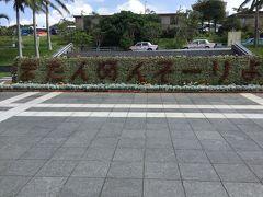 沖縄にまた行ける日を夢見る