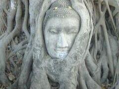 世界文化遺産:アユタヤ遺跡