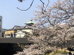 2019春の伊豆旅行