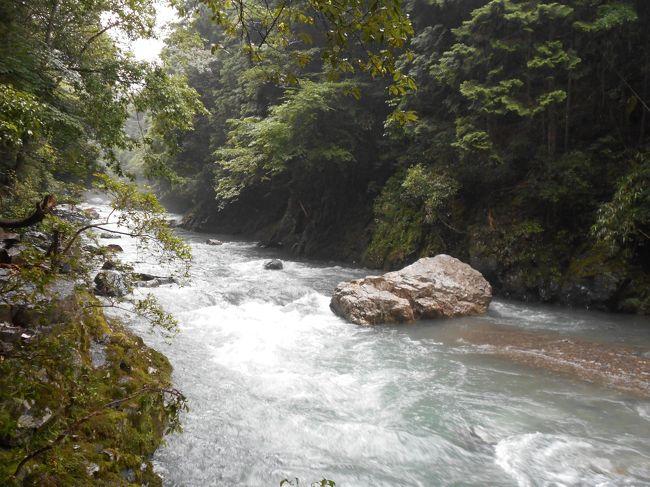 春の陽気にさそわれて、ハイキングをしに京都にやってきました。今日から京都一周トレイルを歩きます。<br /><br />京都一周トレイルは京都市の東に位置する伏見から西に位置する嵐山まで、京都盆地の東北西三方を取り囲む山をハイキングコースとして整備した道です。大きくは4つのパートに分かれていて、深草、東山、北山、西山の各コースがあります。便宜上、コースを分けていますが、実際は一本のコースとしてつながっています。一日では歩ける距離ではないので、これを4,5回にわけて歩く計画でした。ところがいつもの寄り道癖がでて、結局は7行程になりました。