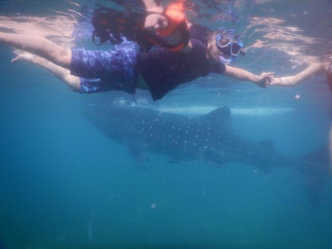 ジンベイザメ と一緒に泳いで写真が撮れるらしいよ!?<br />そんな事からフィリピンへ行く事になり、台湾から2泊3日の旅にGo!!