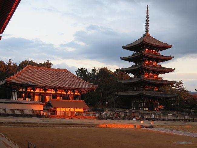 十数年ぶり修学旅行以来の奈良