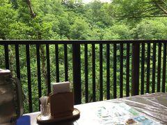 新潟県胎内市奥胎内で(新)探鳥どうでしょう、3日目。「天気晴朗にて、アカショウビンの鳴き声はすれど、その姿未だ発見できず・・・・・・」。