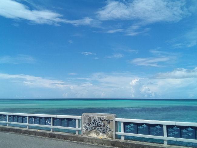 宮古島は2度目です。同伴者に9月の連休位にどこかに行く?と誘った所、台風を心配して7月の連休に行く事になりました。<br />2年前は同程度の金額でベイブリーズマリーナに泊まれましたが、今回はアトールエメラルドに宿泊です。<br />シュノーケル三昧の旅となりました。<br />2年前に訪れる際、出発空港で免許証を忘れた事に気づき、レンタカー利用は泡と消え、タクシーで伊良部大橋と来間大橋を渡る羽目になったのでありました。<br />八重干瀬、新城海岸、シギラビーチに行った前回。さて、今回はどこに行こうか。ちゃんと免許証持参したので自由に周ります。<br />先々週の石垣へは、JALで一人利用は間を空けた席の設定になっていましたが、今回のANAは満席。<br />2週間でこの違いなのかなぁ。<br /><br />ホテルでは、マスク着用のはずなのにしていない人、バイキングで手袋をしない人がいて本当にやめて欲しい。<br />エレベーターで出会った熟年カップルは、私を見て「マスクしてる~」<br />港に立つホテルなのに5階のボタンを押すと「私達11階よね」と似非セレブ気取り。シギラに泊まればって思いましたわ。こういう人たちが感染源となって島を窮地に陥れるのだと思ってしまう。<br />皆、ちゃんと守ろうよ。<br /><br />貴重品を車に置き、水中カメラを持参しなかったため、2日目のビーチの写真がありません。<br />景色も撮らないと、って翌日にはスマホ持参でビーチに行くように。<br />ビーチにいる地元の人達は相変わらず親切でした。宮古バブルはどうなったのでしょうね。ゆったり流れる時間が心地よい旅でした。<br /><br />