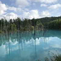 (2日目)札幌→富良野へ。3世代2泊3日、千歳空港からレンタカー利用、札幌と富良野の自然に触れる旅