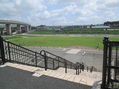 ご近所散歩 神奈川県立境川遊水地公園 2020
