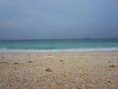 ハイビスカスの島