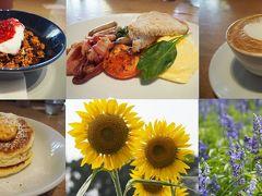 東京都内を楽しもう~♪ ビルズで朝食と葛西臨海公園さんぽ!