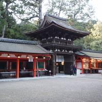 2019年冬 京都と奈良のひとり旅 四日目【1】それはそれは古い神社を巡る 夜都伎神社・石上神宮の朝拝に参加・大和神社
