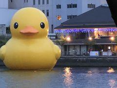 ラバーダックプロジェクト 巨大な黄色いあひる君 2020大阪