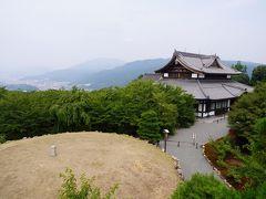 20200808-2 京都 将軍塚青龍殿から東山トレイル下り道…迷子になったみたいね