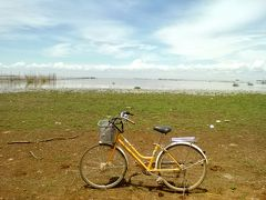 乾季のトンレサップ湖を眺めに行く!…シェムリ・ママチャリ散歩①