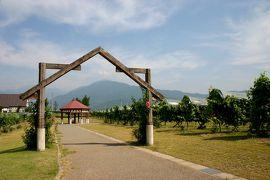 【思い出の旅】夏の魚沼で自然とワインを楽しむ旅