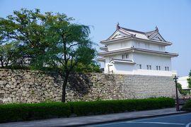 (18)日本100名城 41 駿府城