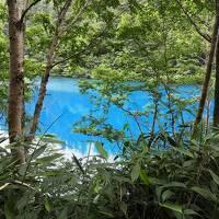 緑の熊の湯温泉、ホタル観賞、横手山とコバルトブルーの大沼池散策