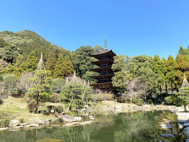 山口宇部空港を拠点に、山口県に旅行にいってきました。どう回ろうか迷ったのですが、まずは山口市内を巡った上で秋吉台を目指すことにしました!