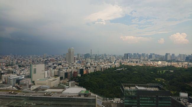 新型コロナウィルス感染の拡大で自宅で自粛してましたが、誕生日にどうしてもいつもと違うことがしたくて、近場のホテルに籠もってみました。<br />(東京在住、しかも自転車でも行ける距離のホテル)<br />なるべく人と接触しないようにしようと思い、眺望のよさそうなホテルに滞在。<br />景色を眺めながら、一時現実逃避。夢の時間を過ごしました。