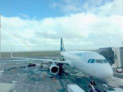 南半球が春なのを忘れてました ニュージーランドの旅 1日目(羽田→オークランド→クライストチャーチ)