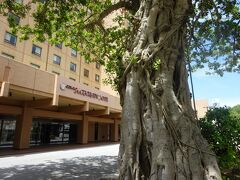 2020.7 沖縄ハーバービューホテルのクラブフロアに泊まって来ました