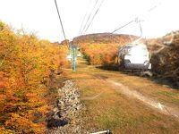 5日目秋のローレンシャン高原