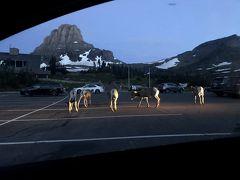 ワシントンモンタナ・大自然の17日間⑮グレイシャーでまったり時間&初の国立公園ロッジ泊